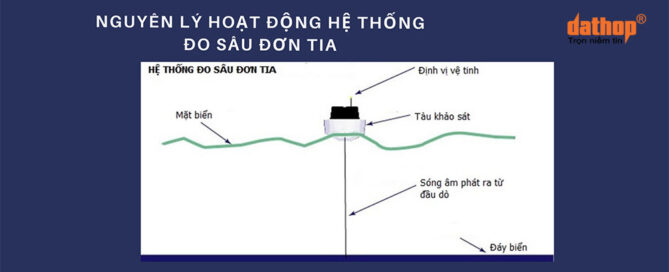 he thong do sau don tia